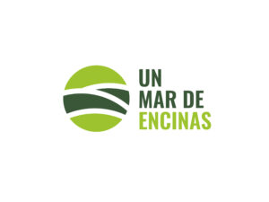 un_mar_de_encinas